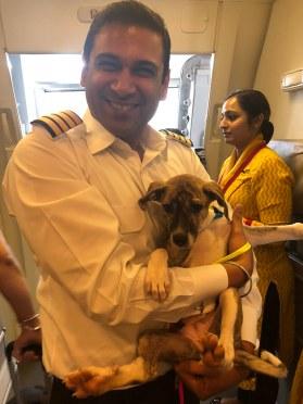 Air India Captain Ameya Atri with Stella